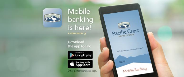 2014-12-12 mobile banking2