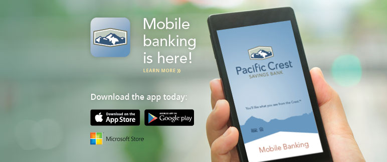 2014-12-12 mobile banking2